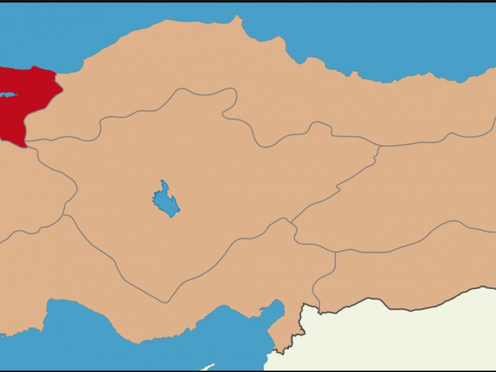 Marmara Bölgesinde Hangi Meyveler Yetişir